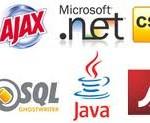 انواع صفحات وب